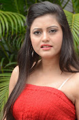 actress Shipra photos gallery-thumbnail-18