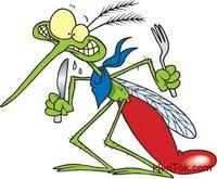Cara alami atasi nyamuk