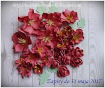 Kwiatkowa rozdawaja u Marylki