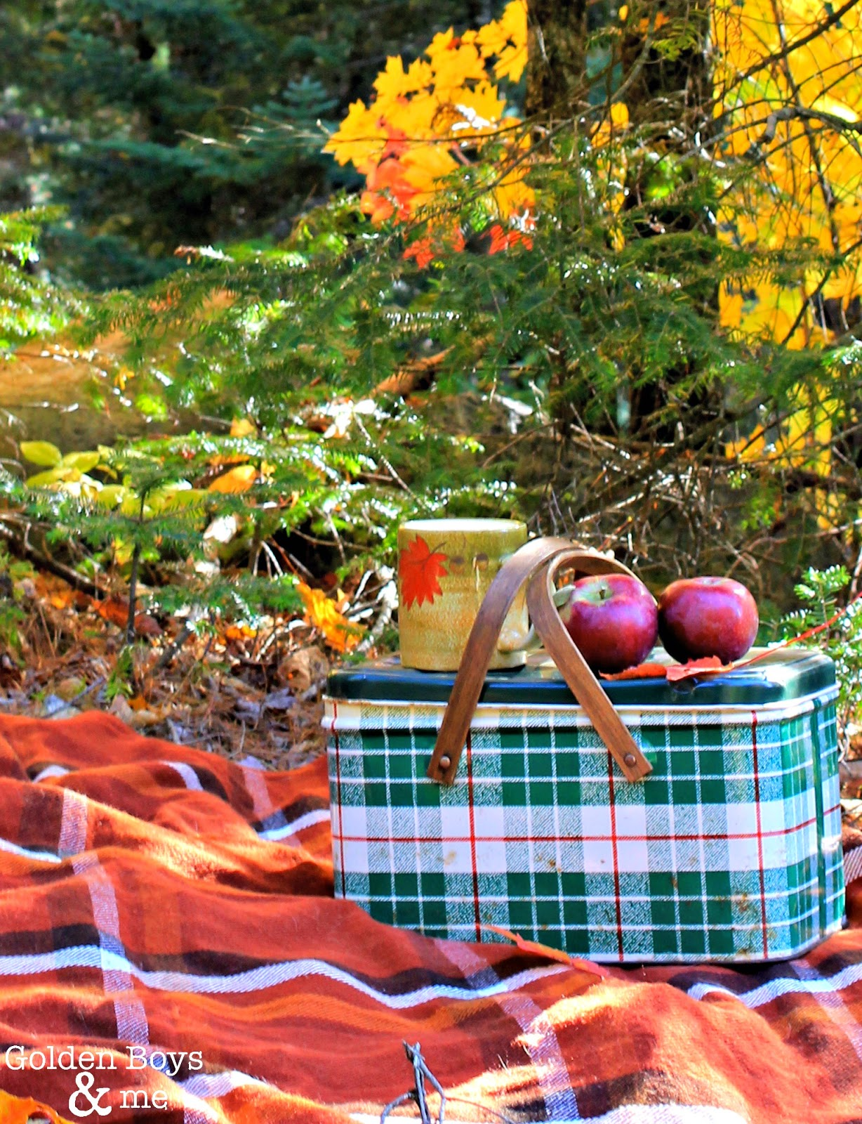 Plaid metal lunchbox at an Autumn picnic-www.goldenboysandme.com