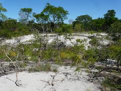 Reserva Natural Laguna Blanca