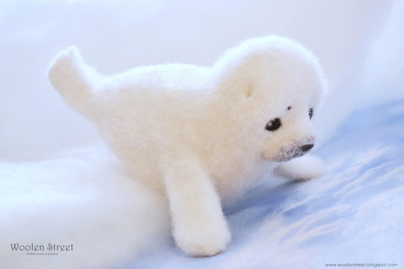10 самых красивых белоснежных животных