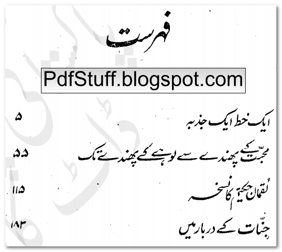 Contents of Urdu novel Jinnat Ke Darbar Mein