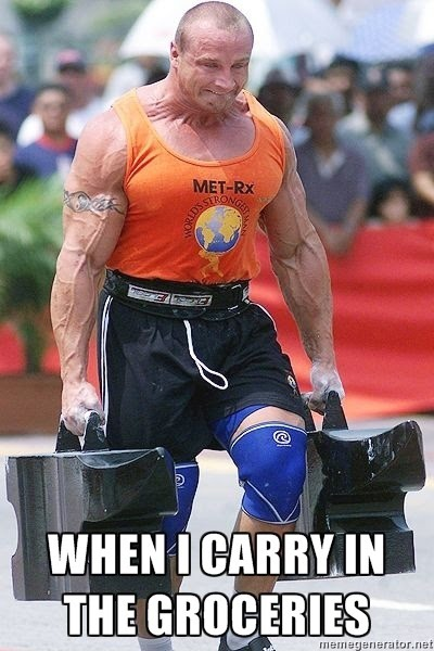 How I Think I Look When I Carry In The Groceries