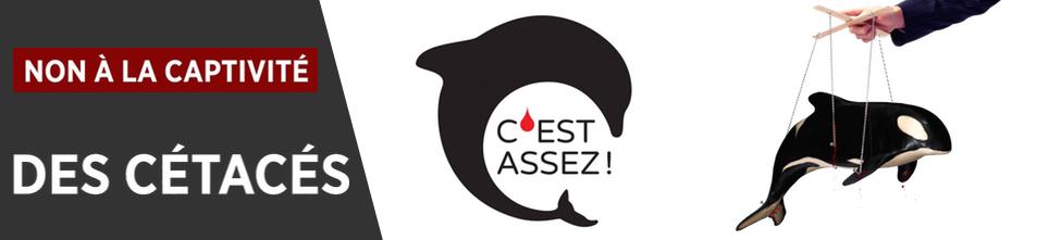 Site national de l'association C'est Assez !