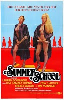 Summer School (Stu Segall) (1979)