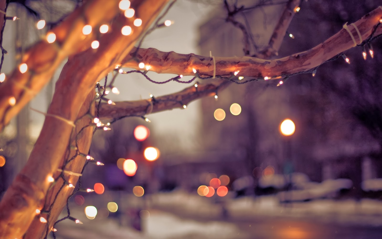 Hi christmas special cute wallpapers dont miss - Light night wallpaper ...