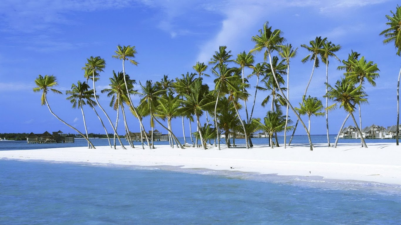 http://4.bp.blogspot.com/-s0ov9H2AnrI/UAWN_a4g-pI/AAAAAAAAKOo/dsZUcT1KT0E/s1366/white-sand-on-beach-wallpaper.jpg