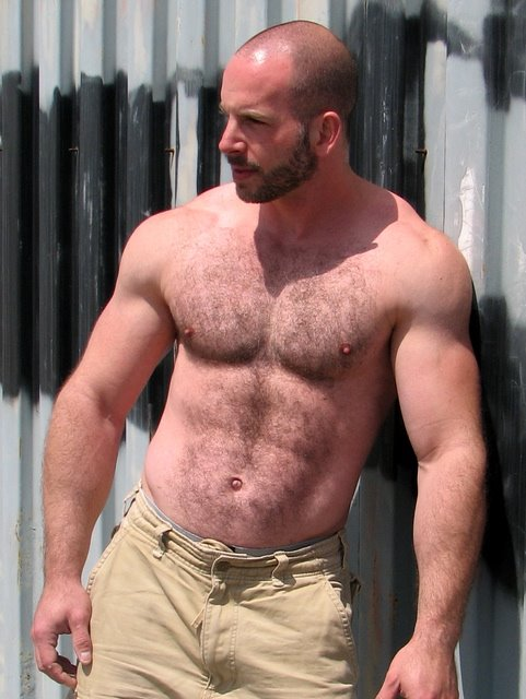 Hairy Muscle Stud Porn Videos