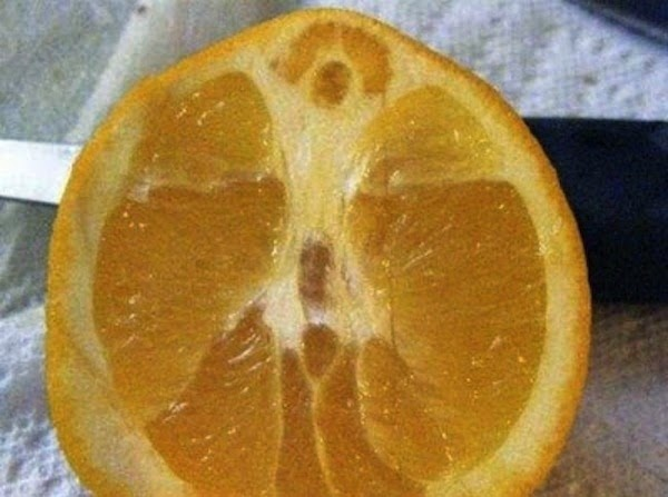 Cristo numa laranja