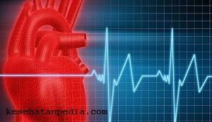 Makanan yang membuat detak jantung normal