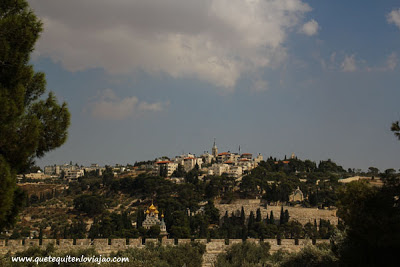 Monte de los olivos en Jerusalén - Viaje a Israel