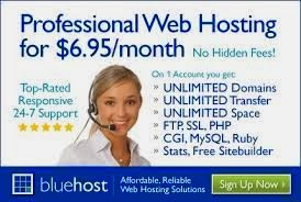 Web Hosting from BlueHost