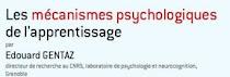 Les neuros sciences