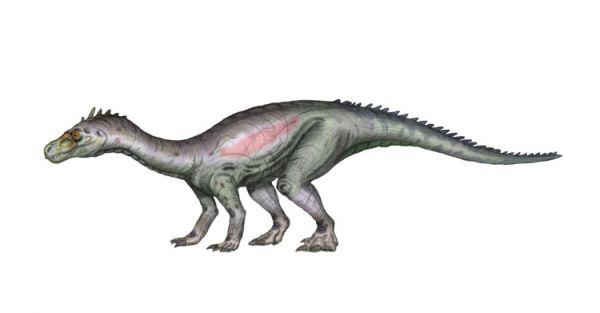 Saturnalia dinosaurios del triasico