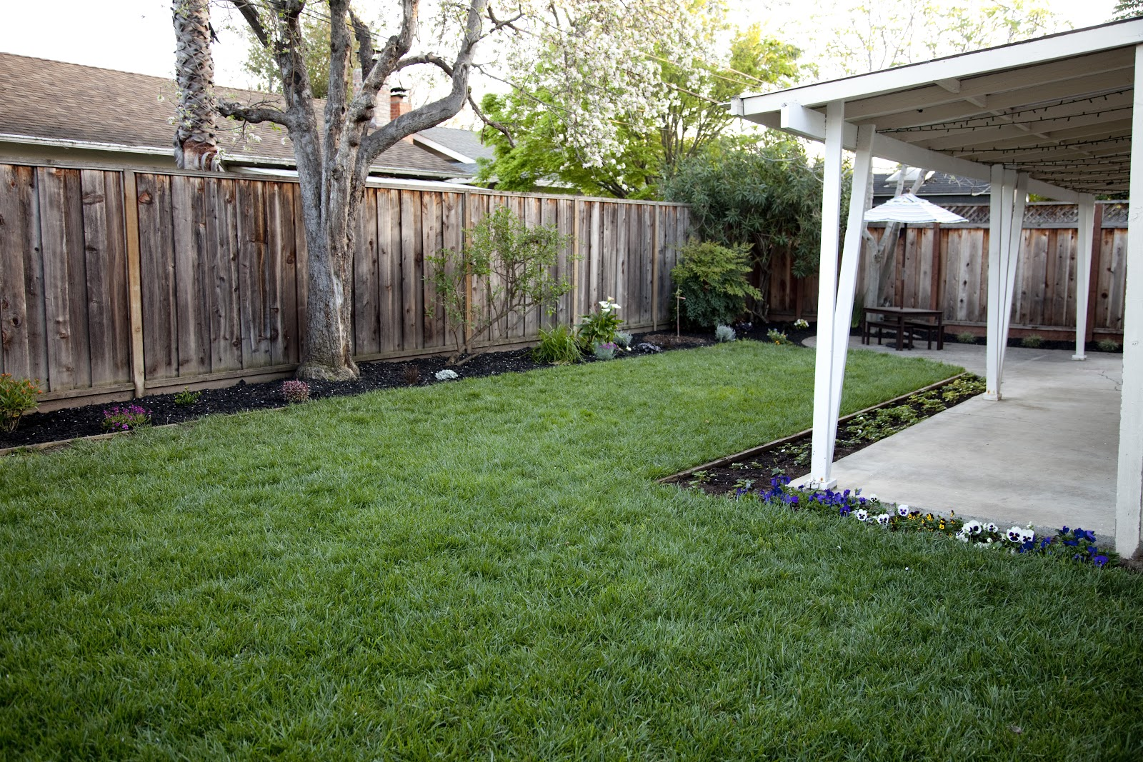 the house of nash backyard landscaping project