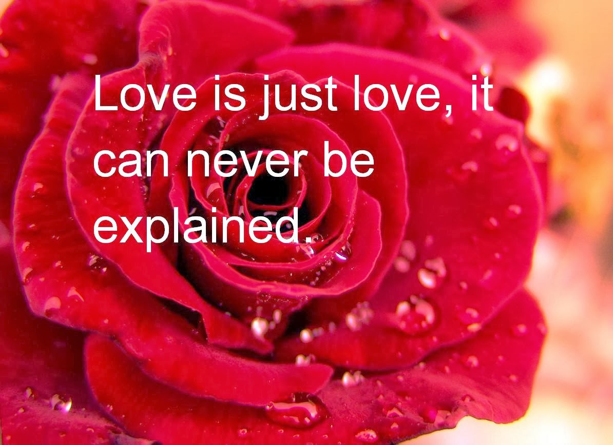 Romantic Valentine Quote For Him My valentine valentines day live