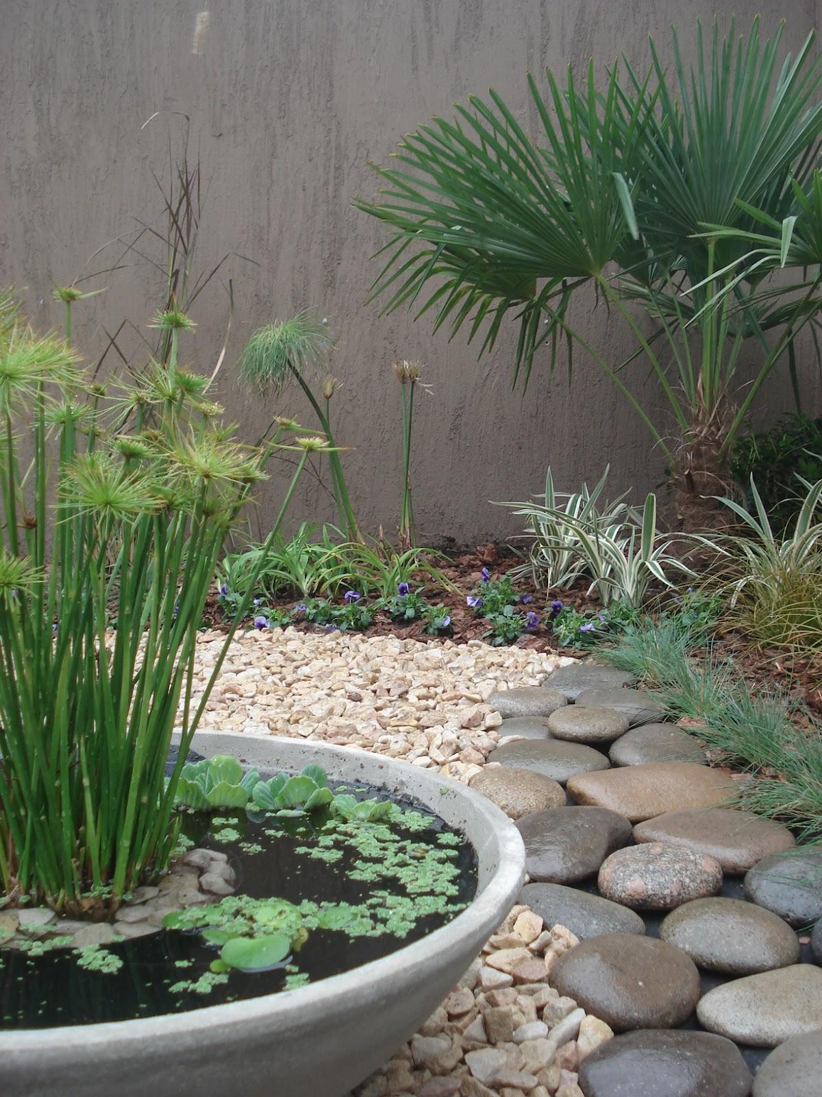 reverdir jardineria y paisajismo estanque en maceta