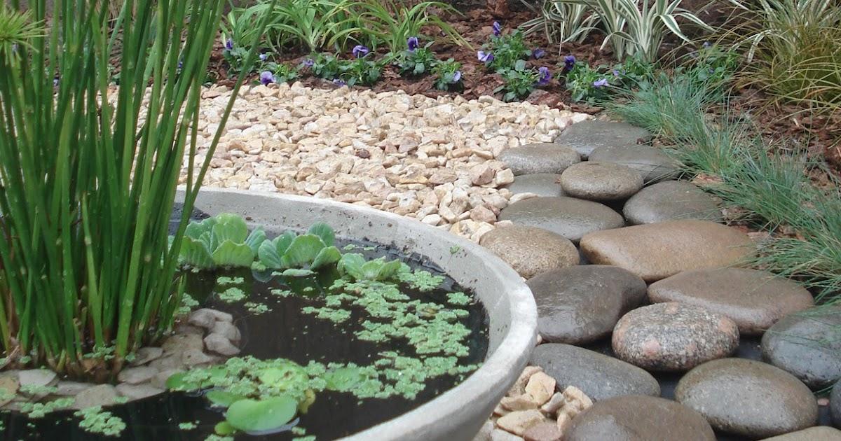 Reverdir jardineria y paisajismo estanque en maceta for Vivero el estanque