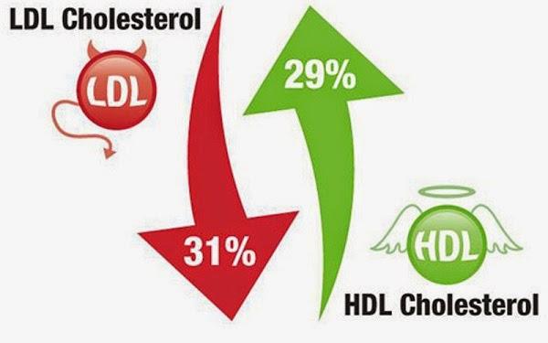 makanan untuk kolesterol