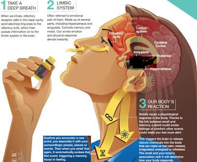 Aromaterapie: uleiuri esentiale Forever