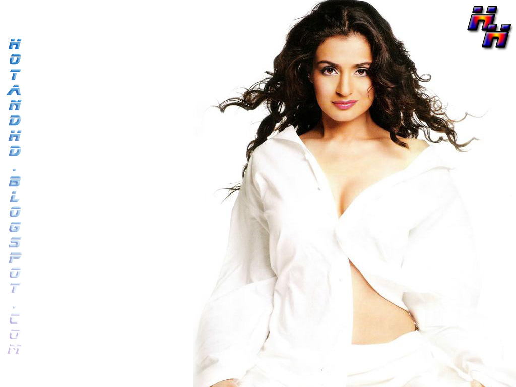 Hot Amisha Patel Nude HD Wallpapers Downloads, HD Pictures of Ameesha