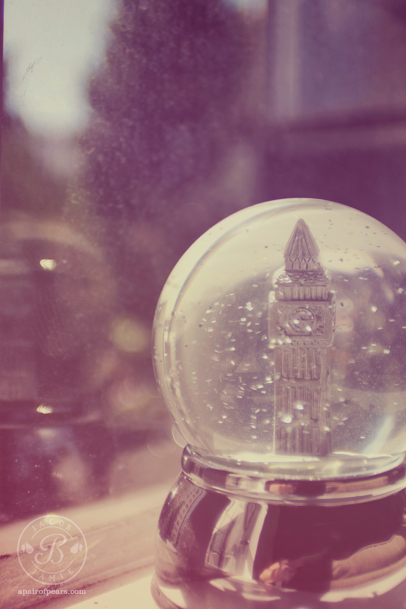 Photo of the Week: Snow Globe – Jamie Bartlett Design