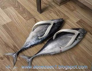 صور احذية غريبة وعجيبة اغرب الصور الطريفة