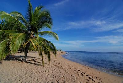 Playa Puerto Vargas, Limón