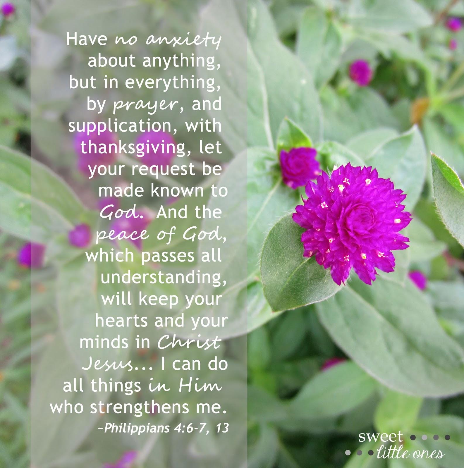 The Emotions of an Adoption Fall Through - Trust in God's Plan - Philippians 4:6-7, 13 - www.sweetlittleonesblog.com