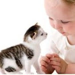Los niños y los gatos