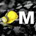 Soma'da meydana gelen maden kazası/ Başbakanlık Yardım Kampanyası