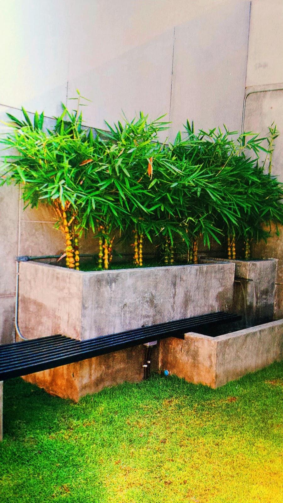 Garden Design Reviews : Seven tips for landscape design beginners idea garden