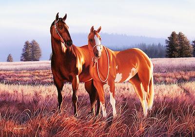 caballos-en-lindos-paisajes