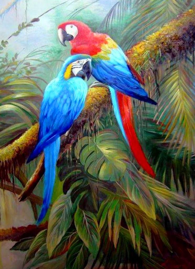 Pinturas cuadros lienzos pinturas guacamayas rojas for Pintura color lino