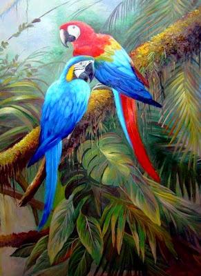 guacamayas-rojas