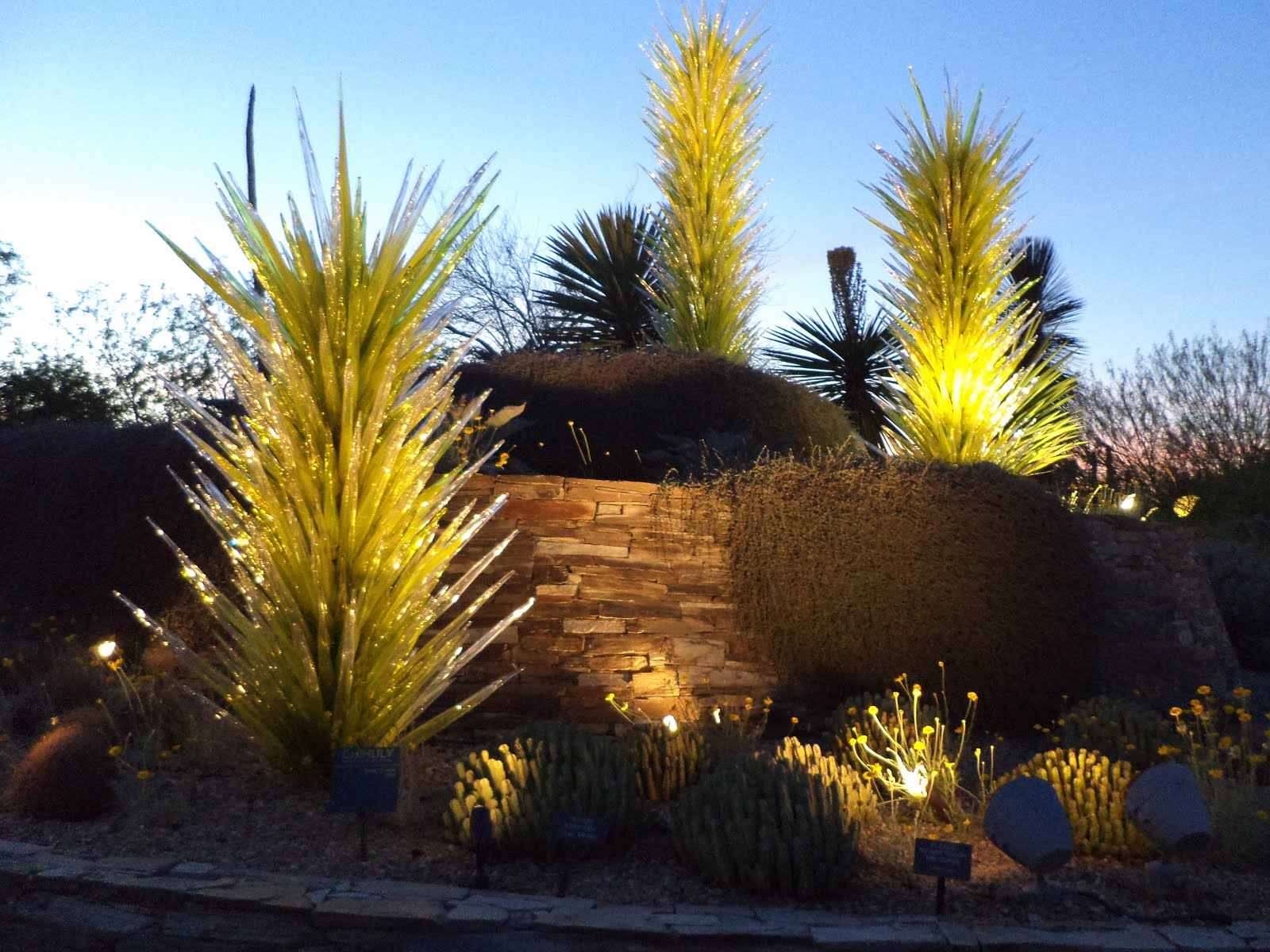 Culver City P.O.: Desert Botanical Garden: Sonoran Light
