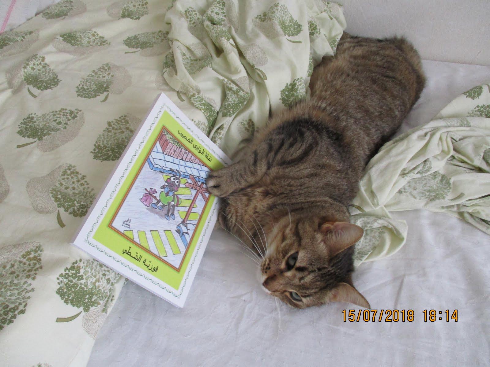 """قطّتي """"ميما"""" تكتشفُ """"النّملة""""."""
