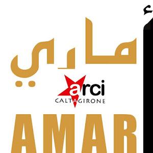 Arci Amari