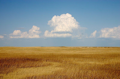 """Cumulus Clouds Over Yellow Prairie"" photo thanks to WikiCommons."