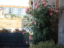 Vestir uma varanda