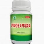 obat herbal asam urat dan kolesterol, obat herbal asam urat tinggi,  obat herbal penyakit asam urat