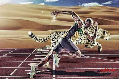 أسرع الحيوانات، عالم العجائب