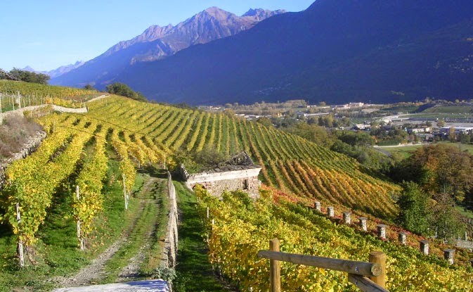 Grosjean winery Valle d'Aosta