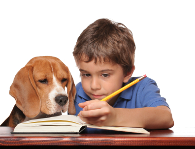 essay on autobiography of dog An autobiography of a dog : i am a little puppy and my name is shappy i have already lived on earth for half a year my owner is a kind little girl, named jenny.