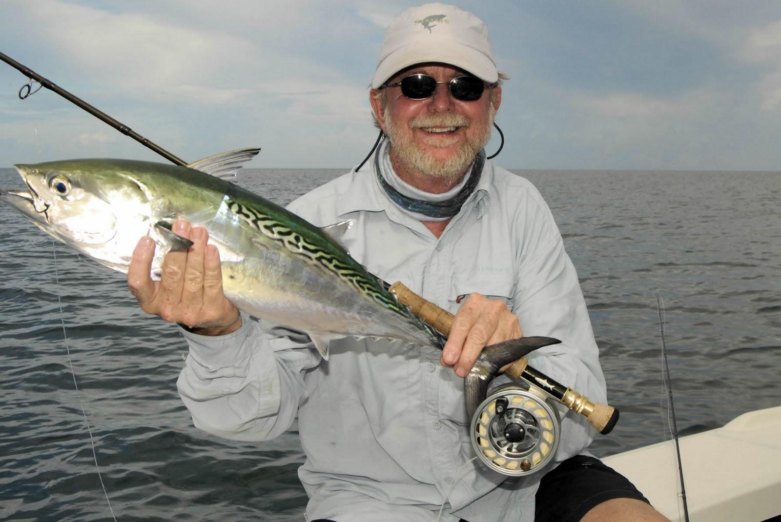 Florida fishing guides fishing reports saltwater boat for Sarasota florida fishing