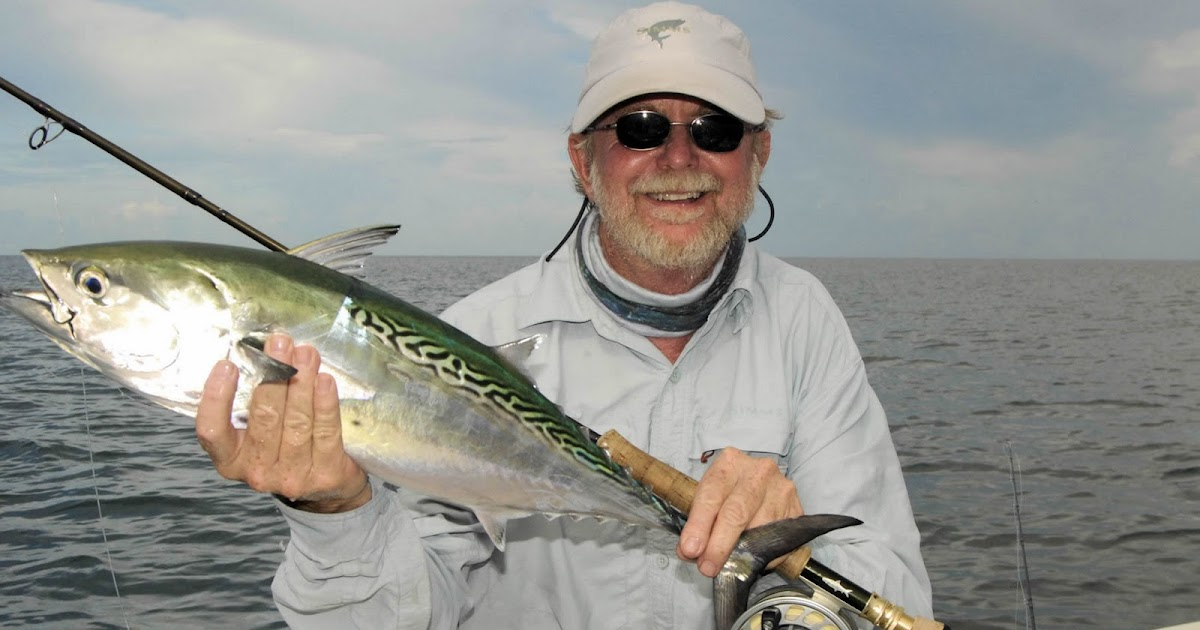 Florida fishing guides fishing reports saltwater boat for Sarasota bay fishing report