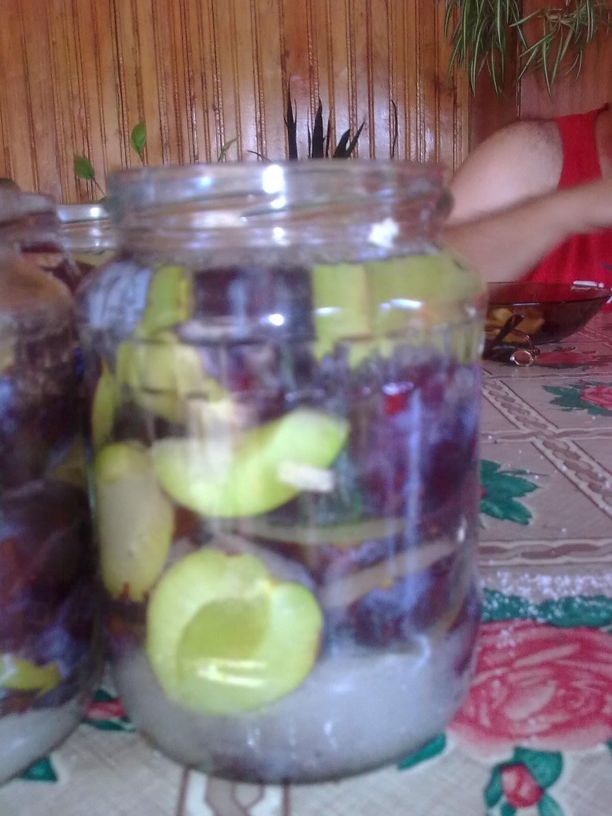 pregătirea compotului de prune pentru iarnă