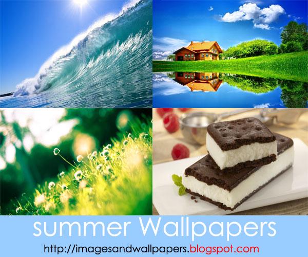 خلفيات الصيف بجودة عالية الدقة summer